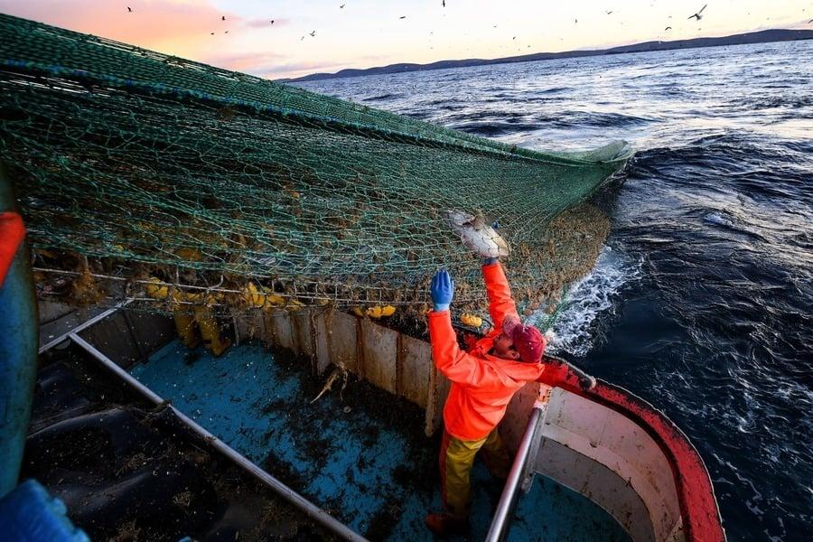 捕魚爭拗成脫歐最後階段關鍵議題