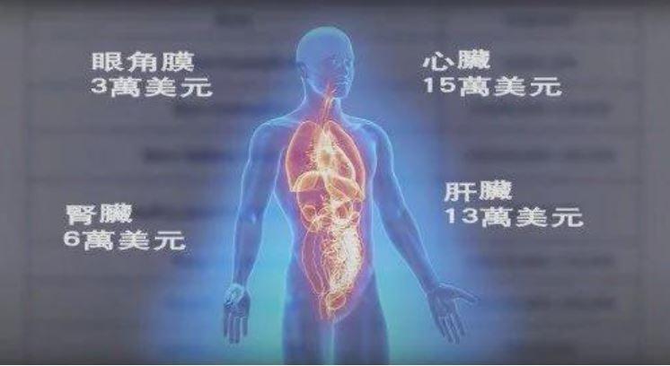 中國器官移植價格。(《醫療大屠殺——掩藏在中國器官移植業的群體滅絕》影片截圖)