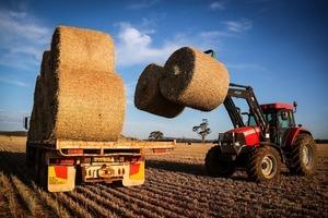 澳洲擬向WTO狀告中共徵大麥雙反稅