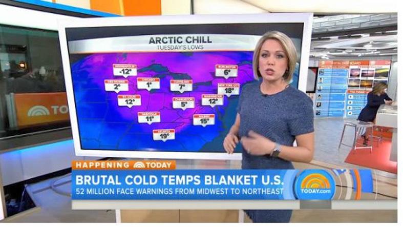 隨著北極寒流南下,美國中西部、北部平原和東北部地區從1月17日開始遭遇嚴寒天氣。(視頻擷圖)