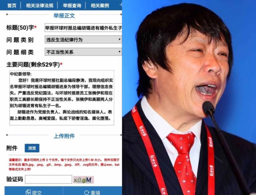 胡錫進被舉報有私生子 發聲明不敢直接否認