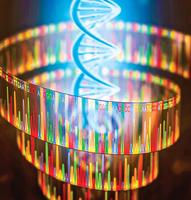 關於基因轉錄過程生物教科書錯了