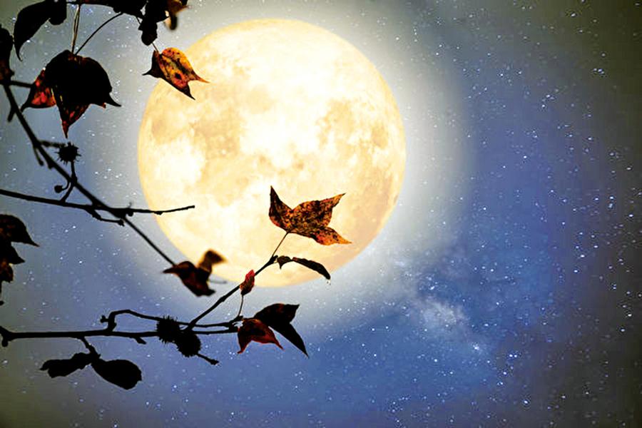 品讀唐詩:盛唐詩人遇見的月光