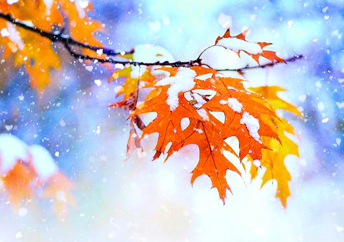 【詩歌】初雪