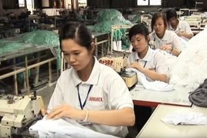 僱用外國人實習生的日企違規件數上升