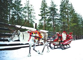 疫情間拜訪聖誕老人的家鄉 芬蘭拉普蘭