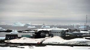 南極洲智利考察站36人確診 病毒傳遍七大洲