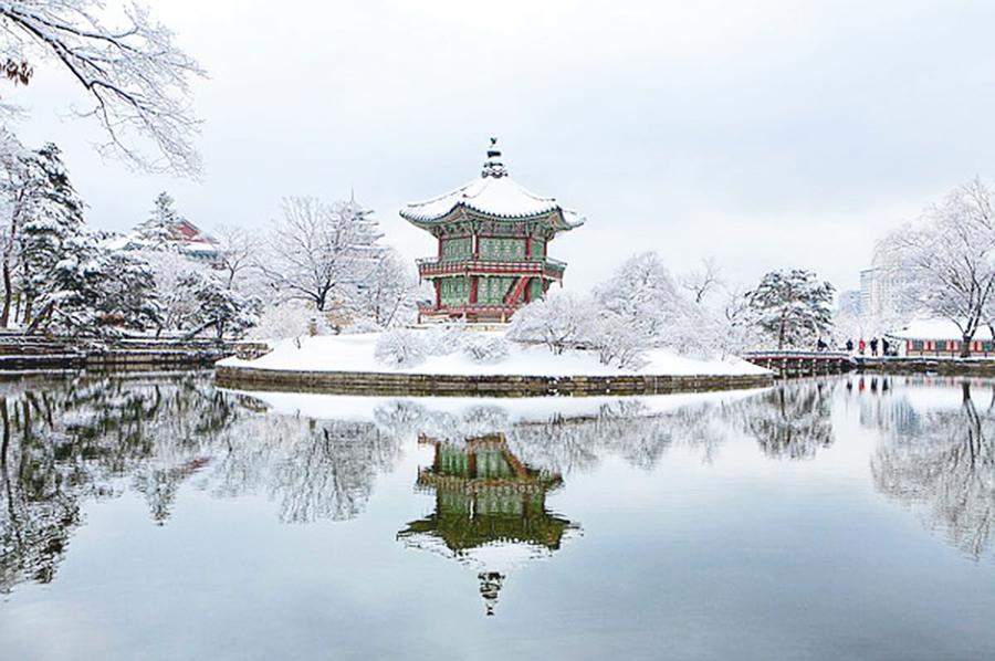「冬至大如年」 陽氣始生養生重養腎