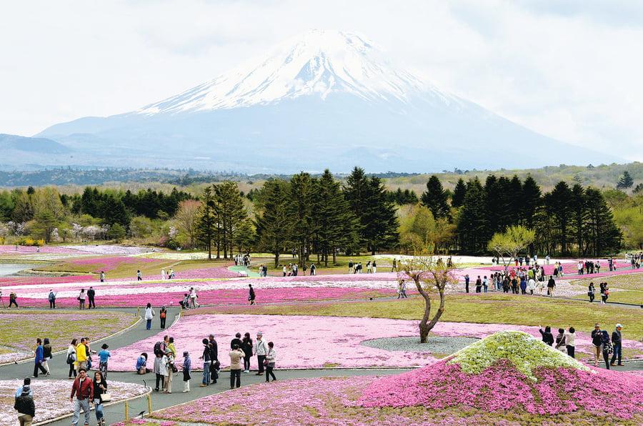 日本世界遺產人氣排行榜(1)