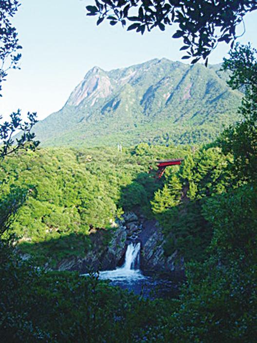 屋久島的景色優美又富有原始氣息。(Wikimedia Commons)