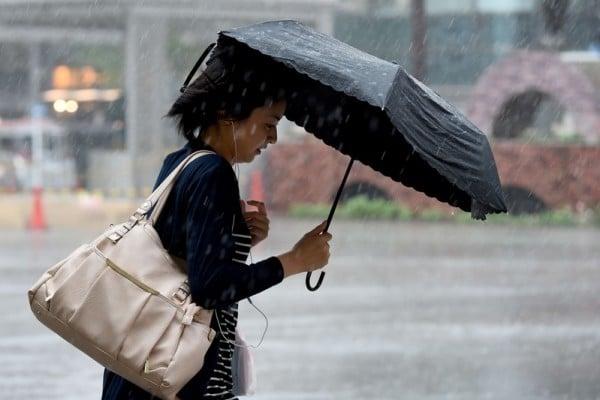 颱風「蒲公英」登陸日本關東 交通大亂