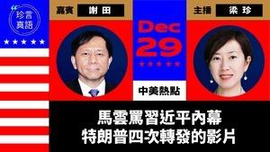 【珍言真語】美學者謝田爆馬雲罵習內幕 大陸富豪榜成了坐牢榜