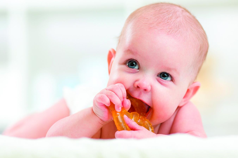 嬰兒用的咀嚼器也可以交給洗碗機清潔消毒。