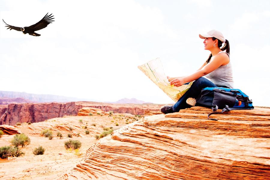 荒野就是文明 黃石公園和美國人的土地倫理
