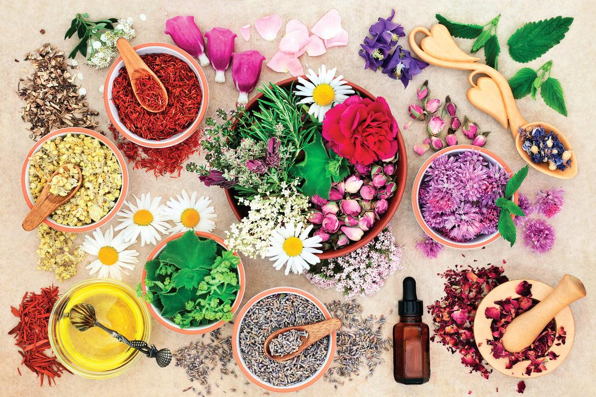 嘗試不同種類的乾燥花,可以豐富你的生活。