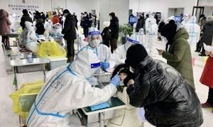 【一線採訪】黑龍江16人因疫情被問責 多村清空