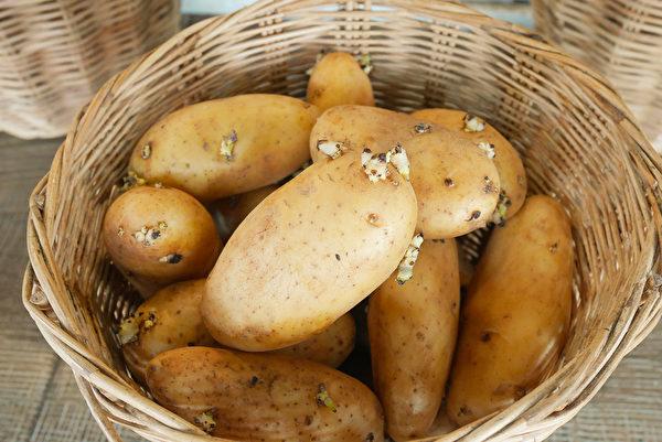 不要吃發芽的馬鈴薯,其中含有毒的龍葵鹼,煮熟也不能去除。