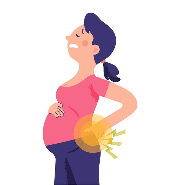 小腹凸、腰痠背痛   恐是骨盆前傾  兩動作矯正回來