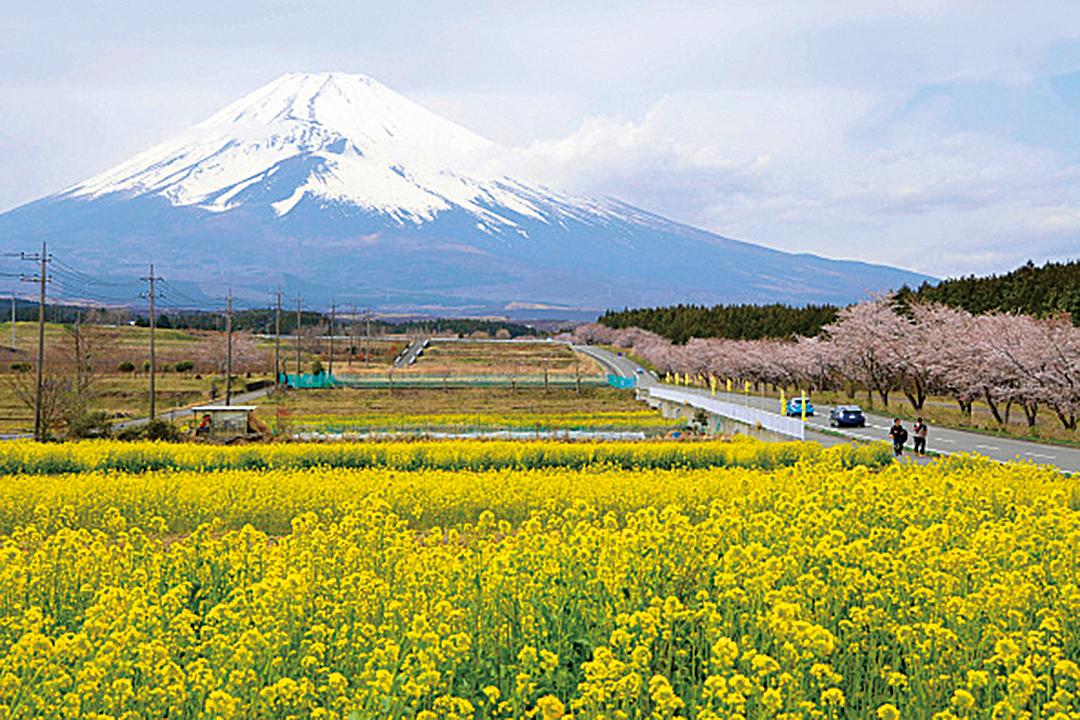 日本富士山成為中國遊客一生必看一次的熱門景點之一。(Getty Images)