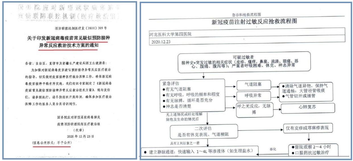 中共國務院印發的「異常反應救治技術方案的通知」(左)與河北醫科大學第四醫院制定的「新冠疫苗注射過敏反應搶救流程圖」(右)。(大紀元合成圖)