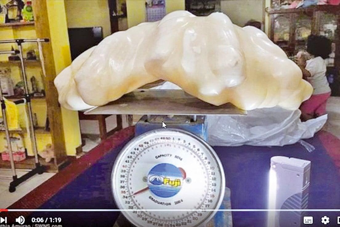 重達34公斤的珍珠。(視頻擷取)