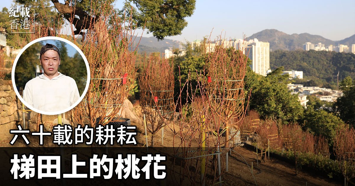 紮根荃灣芙蓉山六十載的「華利園」由邱氏一家經營。(設計圖片)