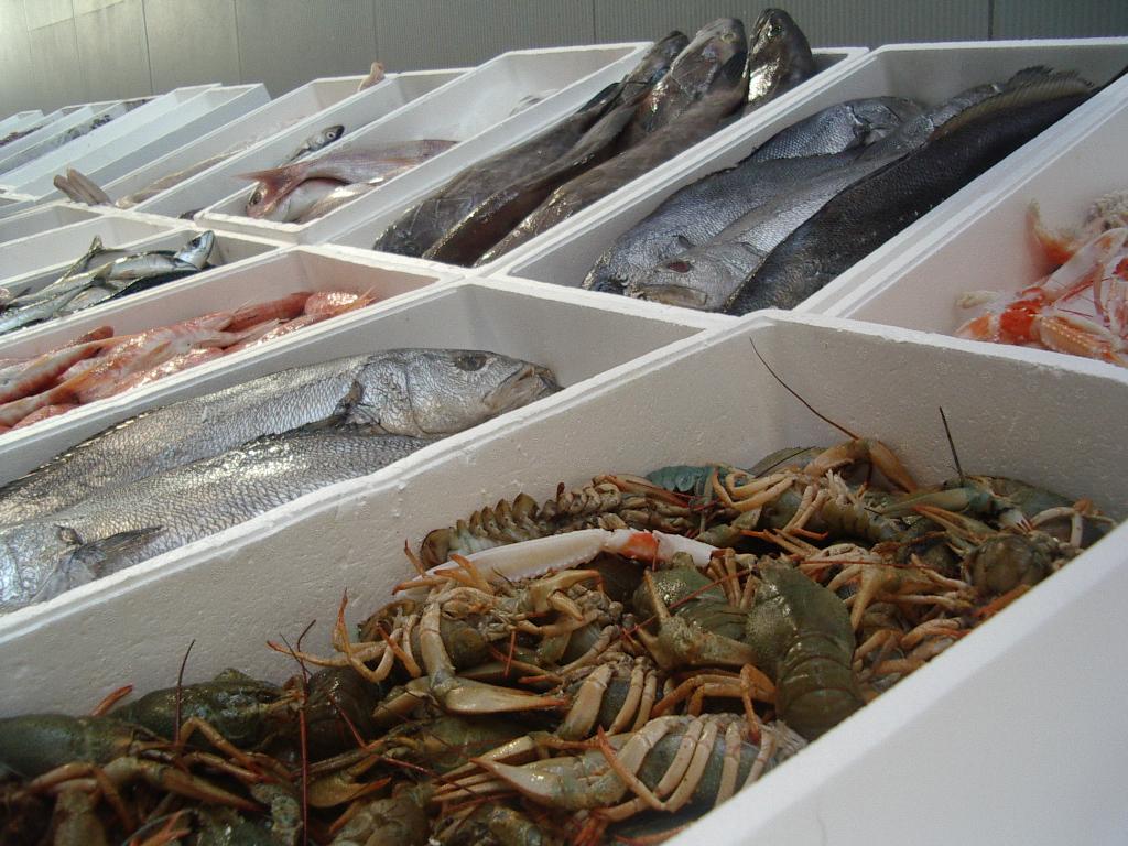 地中海飲食中,魚類是主要食材。