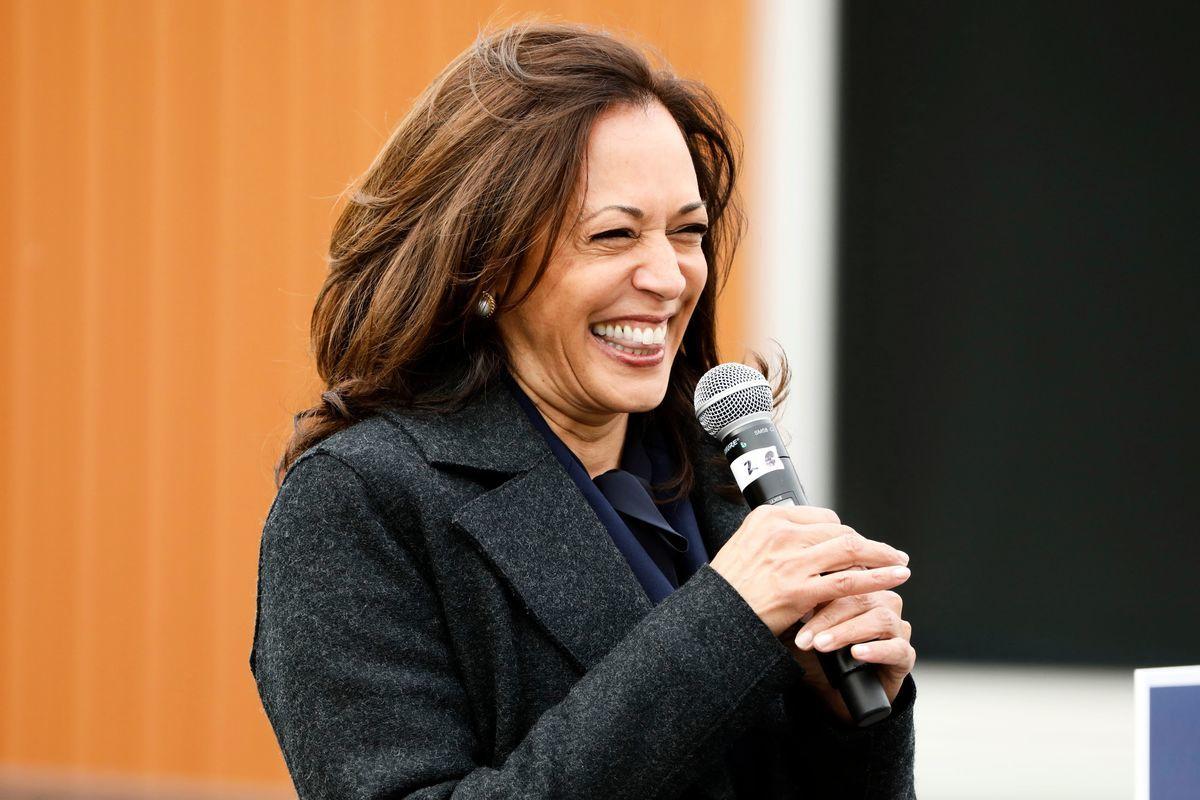 2020年10月25日,民主黨副總統候選人參議員賀錦麗(Kamala Harris)在密歇根州底特律舉行的IBEW Local 58競選活動中致辭。(JEFF KOWALSKY/AFP via Getty Images)