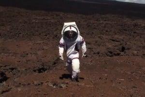 火星生活先體驗 NASA將完成隔離存活實驗