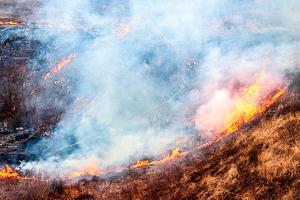 研究山火的降溫   效應大於氣候模型預測