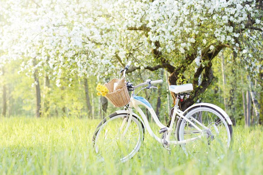 立春要晚睡早起 吃二類食材升陽氣又散寒