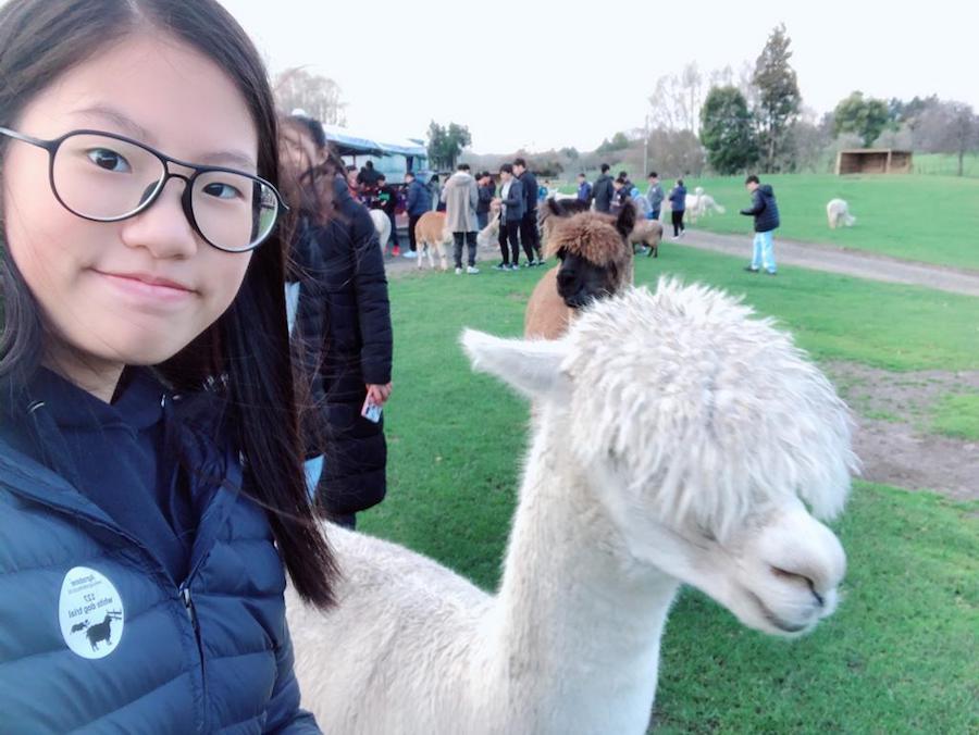 鄭芷澄相信興趣是最好的老師,她熱衷於化學實驗,希望可在化學工程領域發展。(受訪者提供)