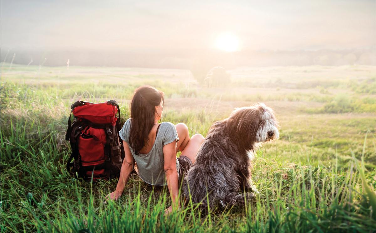 狗狗和人一樣都喜歡接近大自然。
