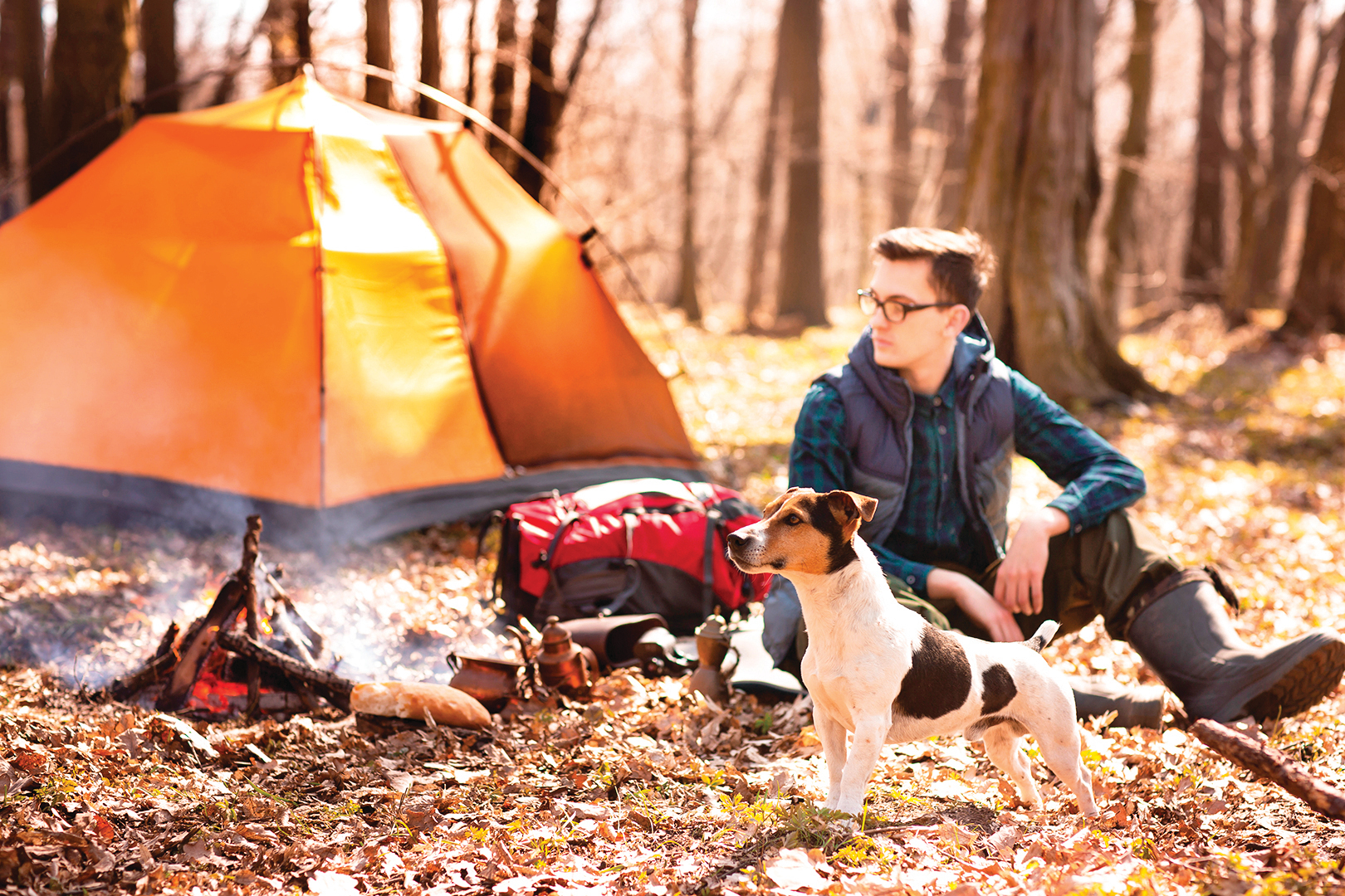 在露營區紮營,玩累了就睡在大自然中。