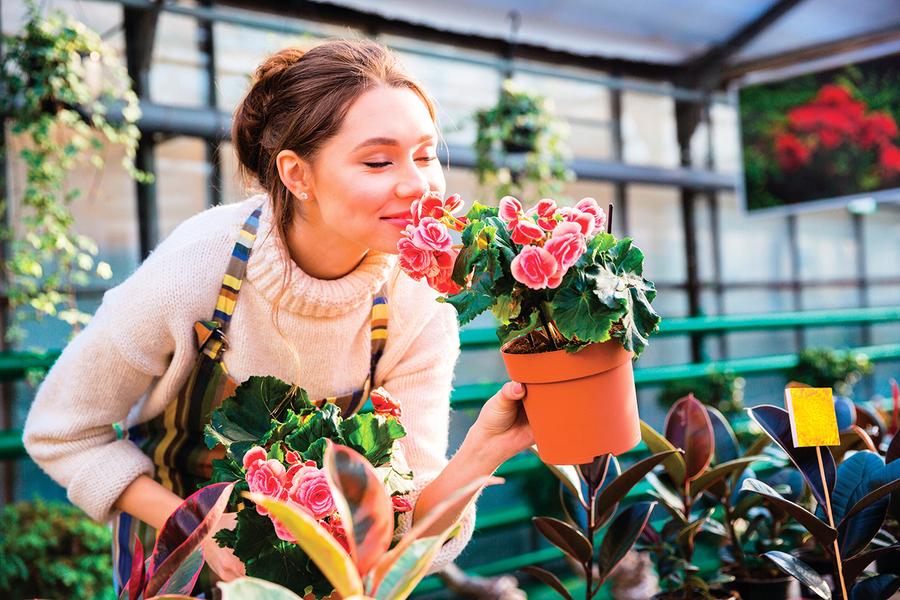 從事園藝不只勞動筋骨還能預防失智