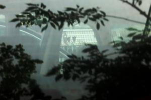 中紀委抓捕貪官手法揭秘