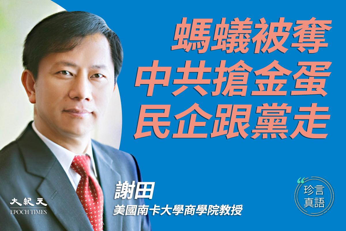 美國南卡大學教授謝田表示,中國的民營企業,不管螞蟻還是大象,在中共眼裏甚麼都不是,頂多是一茬茁壯成長的綠油油的韭菜。(大紀元製圖)