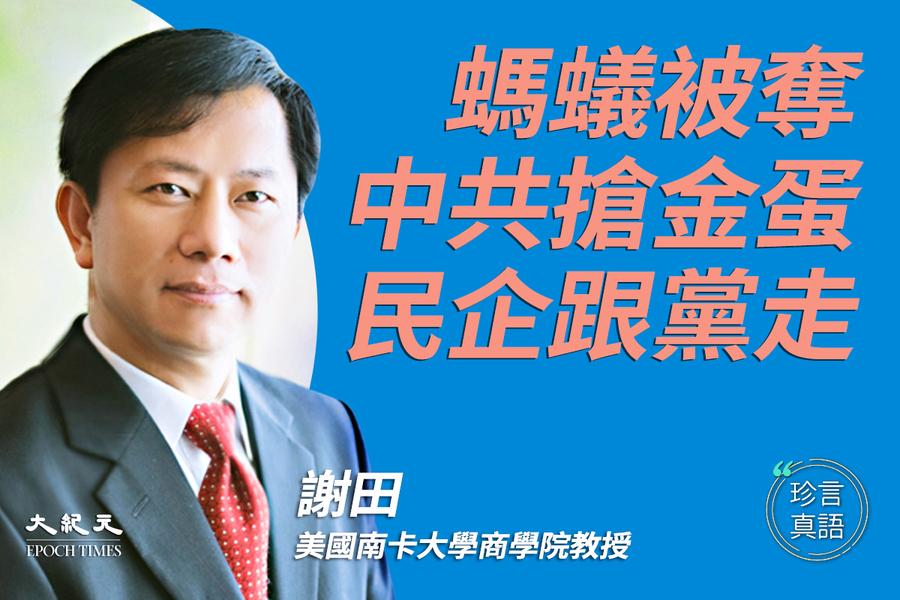 【珍言真語】謝田:中共搶奪民企 馬雲是標誌