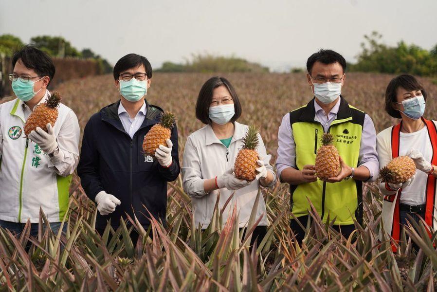 美加等多國力挺台灣鳳梨 五天認購近中國一年訂單