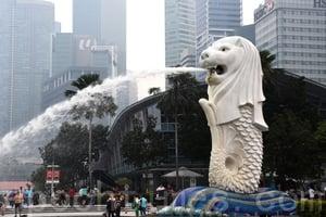 新加坡再增加15人感染寨卡病毒