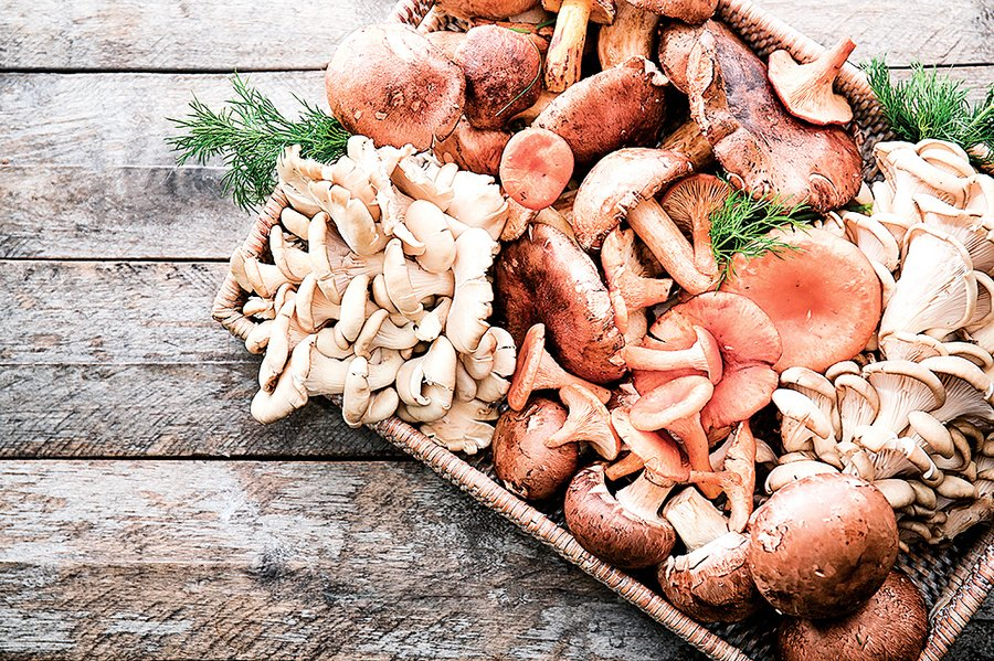 蘑菇補充微量元素又不發胖