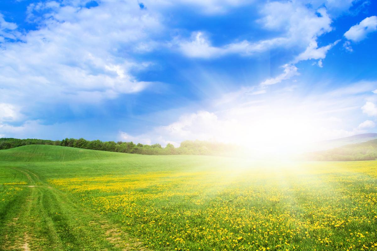 3月20日,進入春季的第四個節氣——「春分」,此時標誌著天地陰陽消長變化的均分點和轉折點,也是人體陰陽平衡的重要節氣。如何在春天使用簡單的食材來養生呢?(Fotolia)