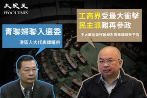 譚耀宗: 青聯和婦聯可加入特首選委  蔡子強: 民主派再難參政 工商界被稀釋