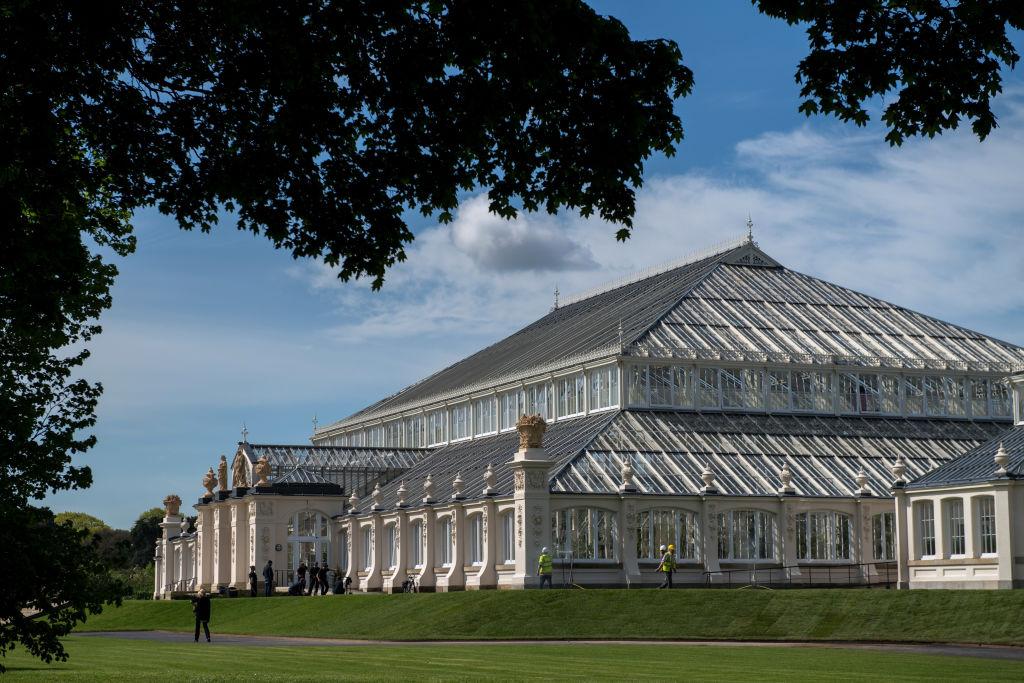 邱園(Kew Gardens)偌大宏偉的溫室。(Photo by Chris J Ratcliffe/Getty Images)