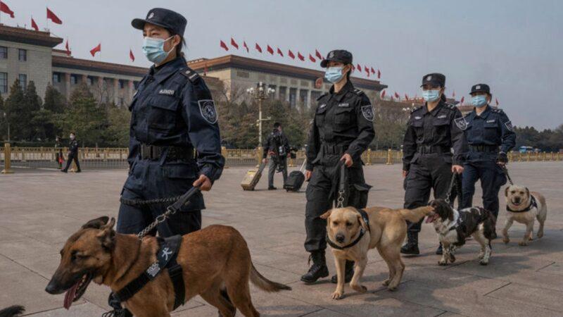 圖為3月8日,大陸警察牽著警犬走在北京大會堂前。(Kevin Frayer/Getty Images)