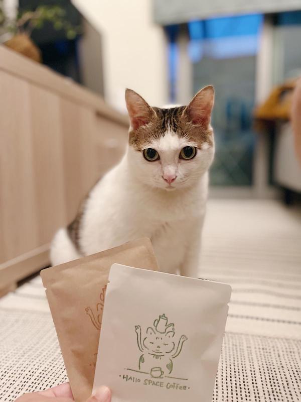 掛耳包包裝上的貓貓肥威,傳遞著照顧流浪貓的心意。(受訪者提供)
