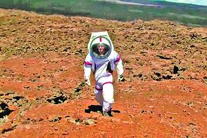 NASA體驗火星生活隔離存活實驗完成