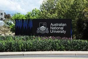 澳洲國立大學藝術展 小熊維尼遭下架
