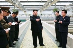 韓媒:北韓內閣副總理金勇進被處決