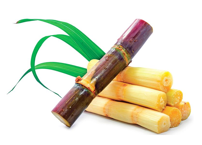 甘蔗清熱又補血 珍貴作物養生大妙用